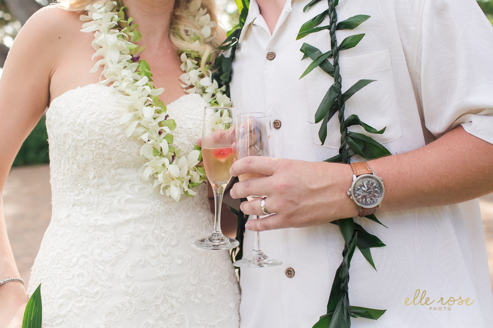 olowaluplantationwedding_hawaiiw_ellerosephoto_-105